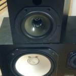 Pelonis – Model 42 speakers